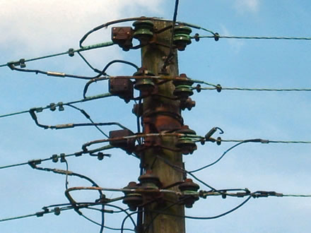 Green shackle insulators